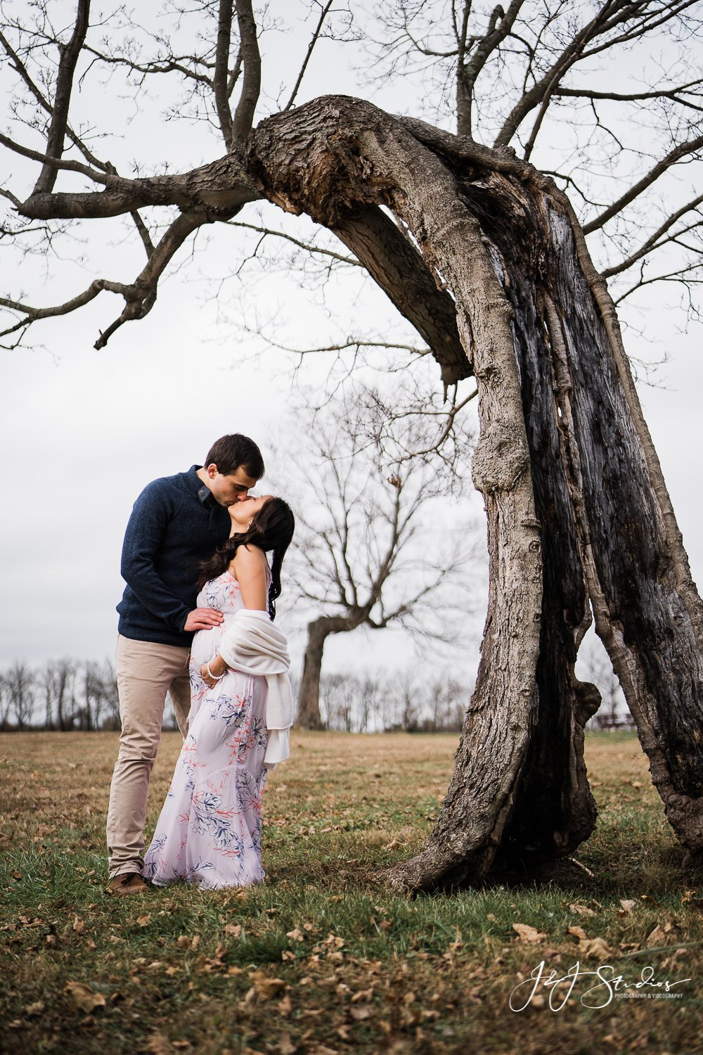 maternity pictures under a tree maternity photographer new jersey