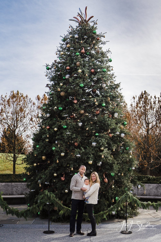 giant christmas tree family portraits longwood gardens