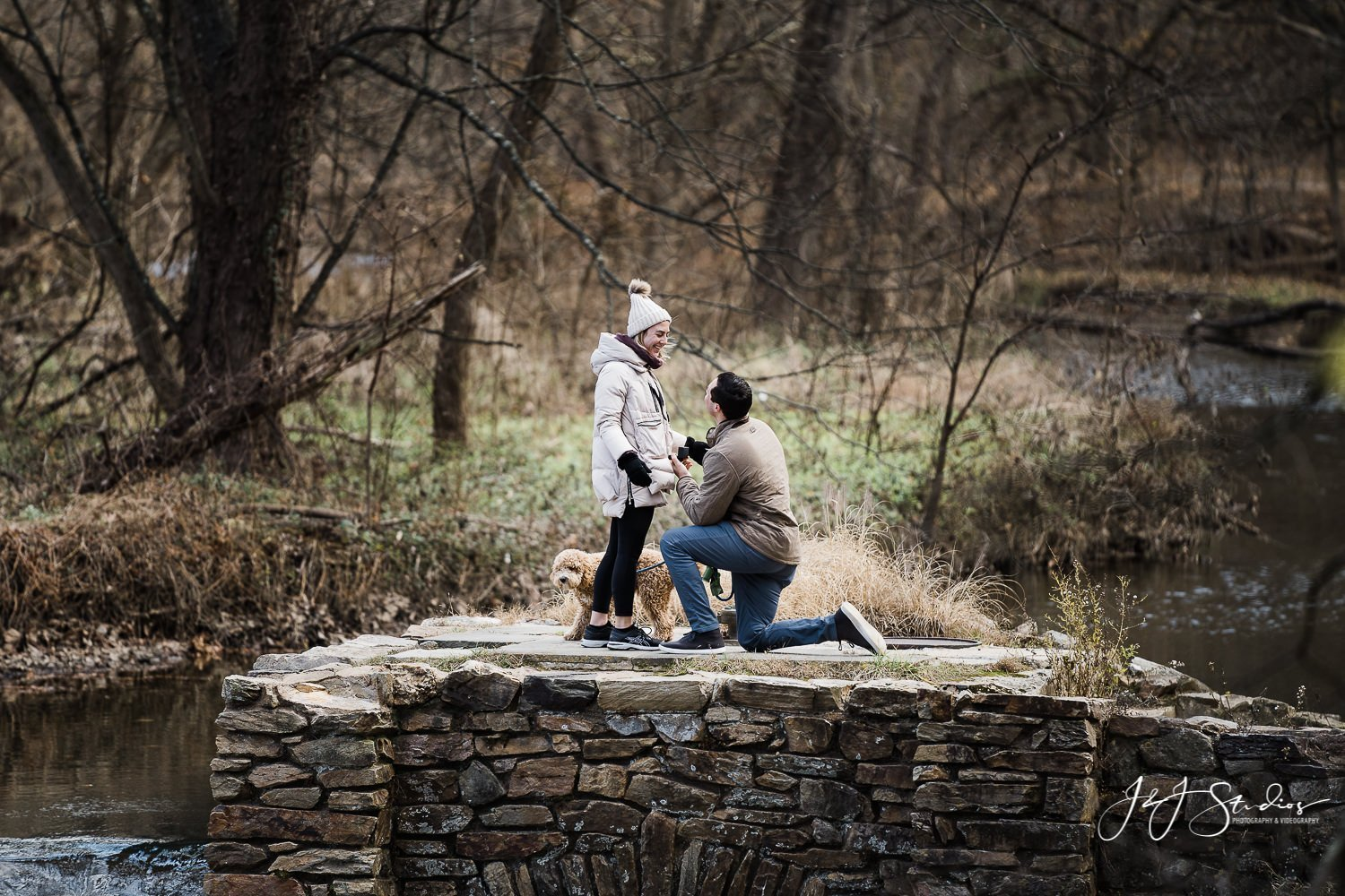 fall proposal ideas philly proposal photographer