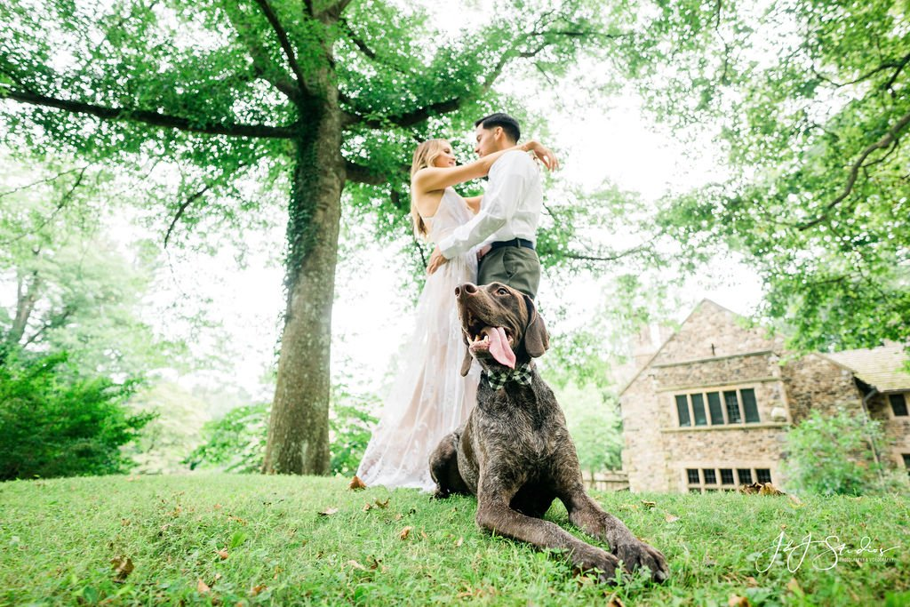 moose dog engagement shoot ridley creek